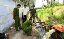 Những sửa đổi quan trọng để đấu tranh có hiệu quả với các tội phạm về môi trường
