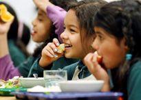 Nhai kỹ không chỉ giúp no lâu, ăn và biết ngon thì thức ăn chính là thuốc!