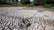 Liên Hiệp Quốc: Triều Tiên đối mặt nạn thiếu lương thực trầm trọng do hạn hán