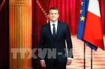 Tỷ lệ ủng hộ Tổng thống Pháp Macron giảm mạnh