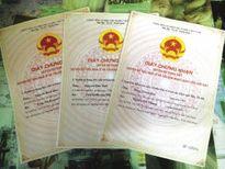 Ninh Bình: Nhiều hộ dân bức xúc vì thủ tục chuyển nhượng quyền sử dụng đất
