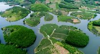 Ngỡ ngàng ốc đảo chè đầu tiên của Việt Nam