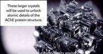 Phát triển tinh thể enzyme ngoài không gian để chế thuốc giải độc