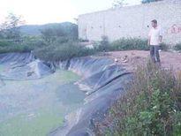Bé gái 9 tuổi rơi xuống hố biogas tử vong