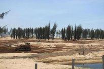 Nhiều sai phạm trong chuyển đổi mục đích sử dụng rừng ở Phú Yên