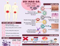 Infographic: Những điều cần biết về bệnh sùi mào gà