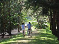 Zenna Villas: Giải 'khát' nhu cầu nghỉ dưỡng và đầu tư cạnh Sài Gòn