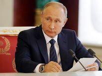 Ông Putin cân nhắc tranh cử Tổng thống năm 2018