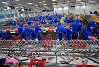 Economist dự báo kinh tế Việt Nam ổn định trong 5 năm tới