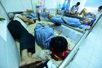 Hà Nội: Sốt xuất huyết vẫn tăng mạnh, 2.700 người mắc mới/tuần
