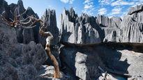 Trekking rừng đá Tsingy: Hành trình cực kỳ gian nan nhưng đáng để bạn nỗ lực