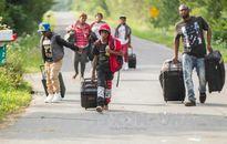 Canada tiếp nhận hàng trăm người tị nạn chạy khỏi Mỹ