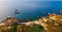 Xả thải ra biển Bình Thuận: Tình tiết mới nhất
