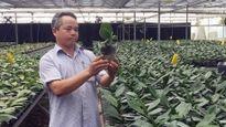 Đẩy mạnh ứng dụng công nghệ cao trong sản xuất nông nghiệp