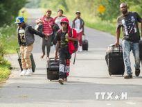 Canada: Quebec sắp quá tải vì dòng người tị nạn tăng đột biến
