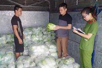 Bắt quả tang xe ô tô chở gần 2 tấn rau Trung Quốc