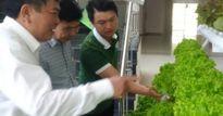 Muốn làm nông nghiệp công nghệ cao 8-9 tỷ đồng/ha hãy đến Lâm Đồng
