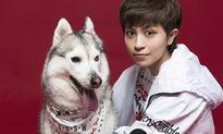 Gil Lê cực yêu bên cún cưng gắn bó 6 năm