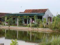 Thiếu cương quyết trong giải quyết vi phạm lĩnh vực đất đai ở Quỳnh Lưu