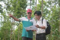 Bình Phước xin ý kiến Thủ tướng để xử lý việc giao sai đối tượng 140ha đất rừng