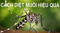 Mẹo đuổi muỗi hiệu quả nhất giúp đình chẳng ai bị sốt xuất huyết dù đang đại dịch