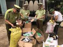 Quảng Ninh: Phát hiện và thu giữ 350kg hạt giống nhập lậu