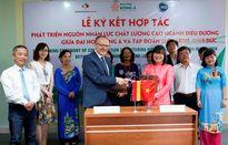 ĐH Đông Á đào tạo điều dưỡng tiêu chuẩn quốc tế
