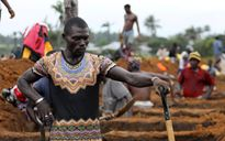 Sierra Leone vẫn còn hàng trăm người mất tích sau trận lở đất
