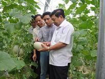 Xây dựng Anh Sơn trở thành cực tăng trưởng của miền Tây Nghệ An