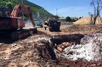 Hãi hùng phát hiện 7 tấn lợn chết đang phần hủy trên tàu