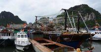 Quảng Ninh: Nhiều nơi có thể bị ảnh hưởng nguy hiểm do bão số 6