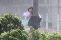 Hậu quả kinh hoàng của siêu bão Hato càn quét khủng khiếp từ Hồng Kông sang Trung Quốc