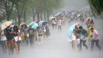 Bão số 6 thổi bay người ở Macao, Hong Kong