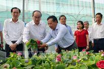 Xây dựng Tp. Hồ Chí Minh thành trung tâm giống vật nuôi trong khu vực