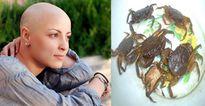 Sự thật về bài thuốc ăn cua sống chữa được bệnh ung thư đang lan truyền trên mạng
