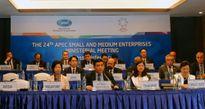 Nhiều cam kết hỗ trợ cho DNNVV trong APEC