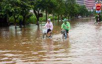 Nhiều con đường ở Hải Phòng 'thành sông' sau bão số 10