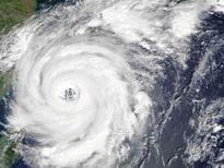 Bão Talim đổ vào Nhật Bản, hàng trăm chuyến bay bị hủy