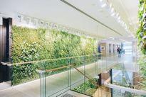 5 bức tường xanh góp phần nâng cao chất lượng công trình