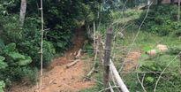 Hương Khê – Hà Tĩnh Người dân tự ý rào vườn, bịt lối đi của hàng xóm
