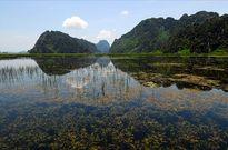 Quảng Nam công bố 15 dự án, lĩnh vực đầu tư có nguy cơ tác động lớn đến môi trường