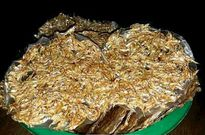 Bánh tráng cá cơm - đặc sản sông nước vùng biên Kon Tum