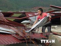 Yêu cầu ngân hàng miễn giảm lãi vay những hộ bị thiệt hại do bão số 10