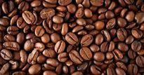 Giá nông sản hôm nay 20.9: Giá cà phê 'đổ nhào', giá tiêu khó tăng