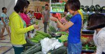 Nông sản, rau củ Đà Lạt xuất Nhật, Đài Loan sắp tràn về Thủ đô