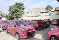Hải Phòng: Xe taxi trên địa bàn thành phố sẽ chung màu sơn