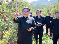 Hoạt động đầu tiên của Kim Jong-un sau khi Trump dọa 'hủy diệt'?