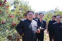 Bộ trưởng Quốc phòng Mỹ: Có dấu hiệu Triều Tiên thiếu hụt nhiên liệu vì lệnh trừng phạt
