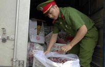 Chặn đứng 60 thùng rau, quả và 535 kg sản phẩm động vật không rõ nguồn gốc