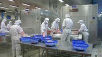 Mỗi năm buộc tái xuất nhiều lô thực phẩm đông lạnh nhập khẩu